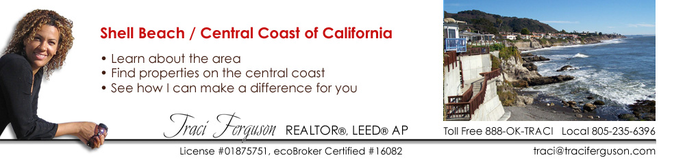 Shell Beach, Realtor, Real Estate Agent, ecoBroker, San Luis Obispo,  Coastal, Property, Find Agent